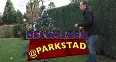 Deswijzen@Parkstad #79 – Kerstbomen in Parkstad